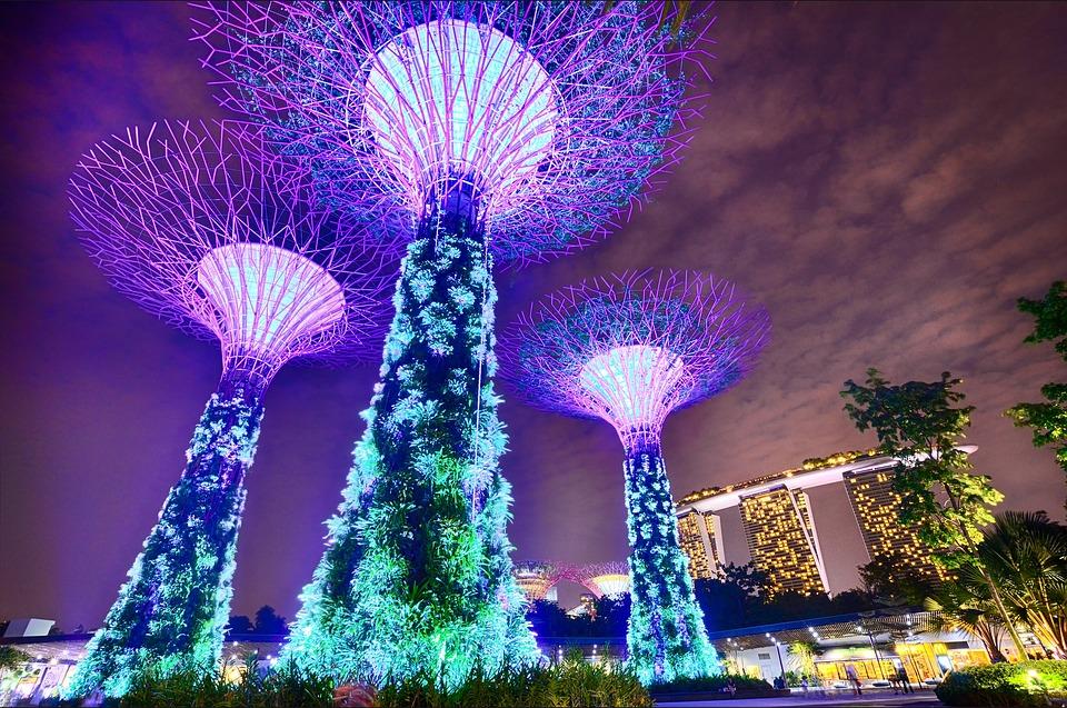 Arboles Jardines de la Bahía de Singapur parques urbanos
